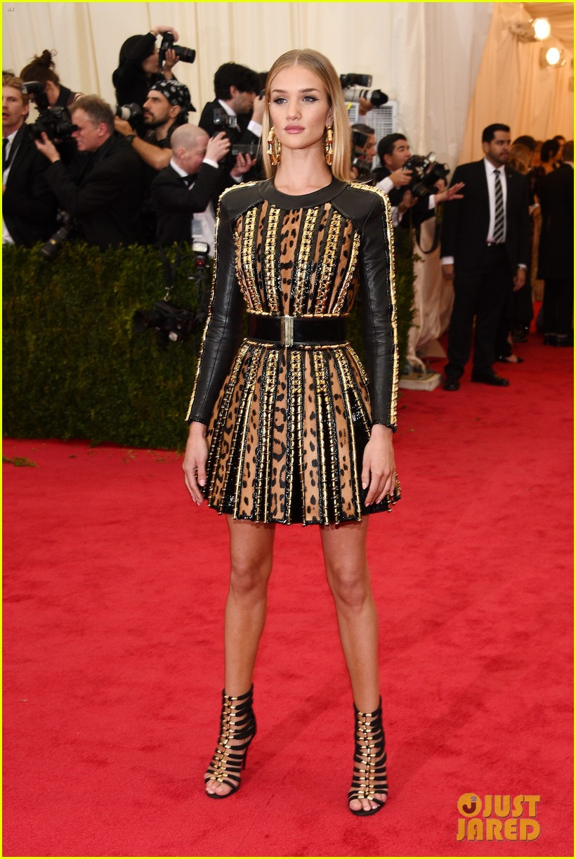 rosie huntington whiteley is picture perfect at met ball 2014 033106038