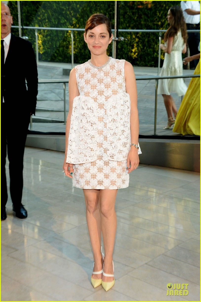 marion cotillard graceful at cfda awards 2014 013126781