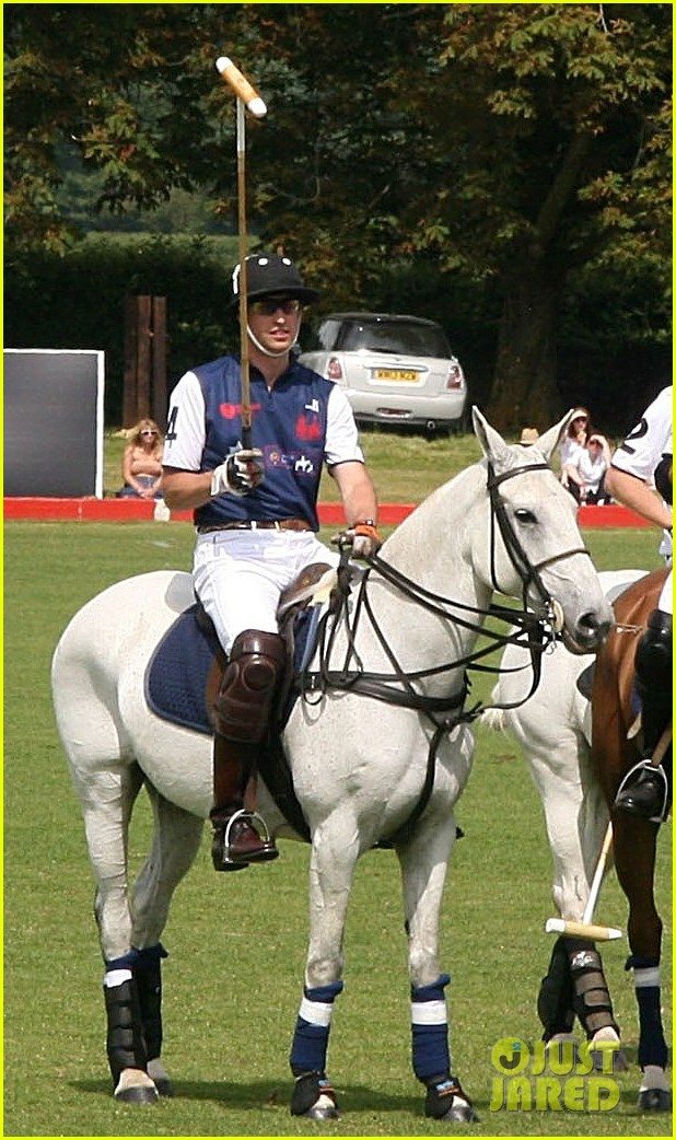 prince harry prince william make it a royal affair at polo match 013141408