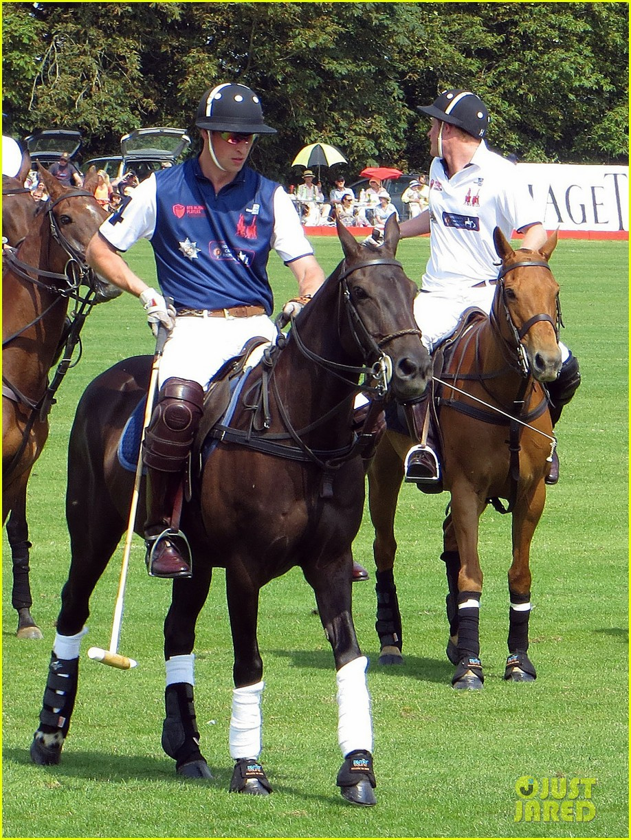 prince harry prince william make it a royal affair at polo match 023141409