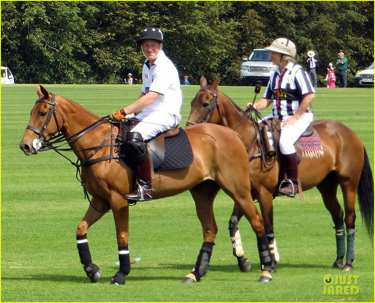 prince harry prince william make it a royal affair at polo match 093141416