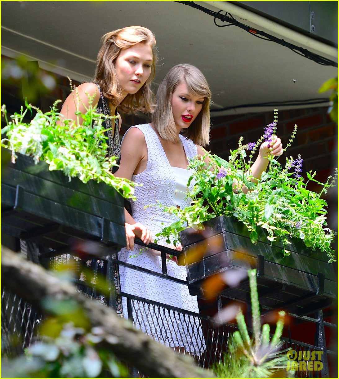 taylor swift plants in her garden with karlie kloss 023135014