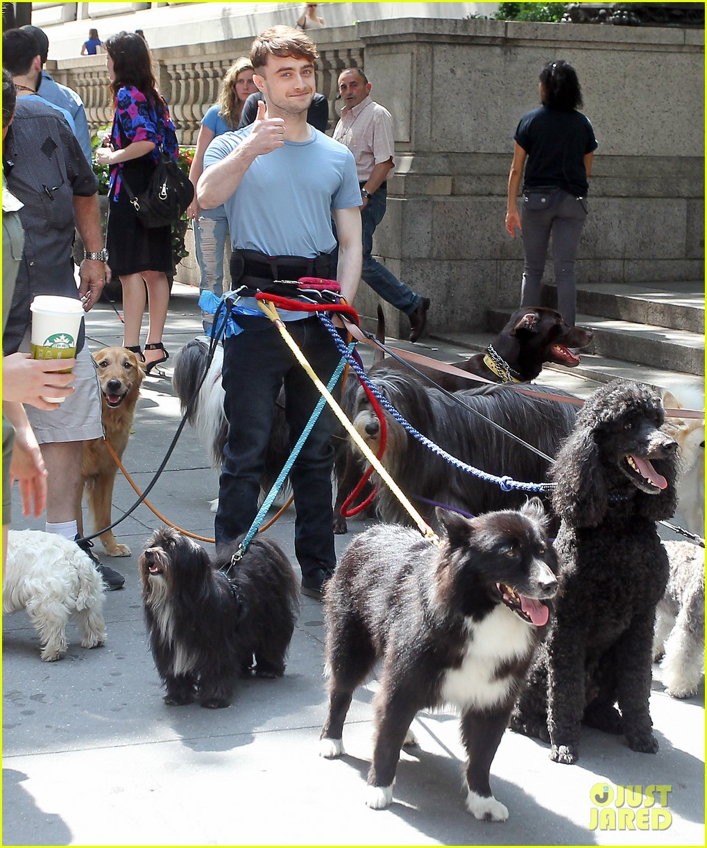 daniel radcliffe dog walker trainwreck nyc set 07