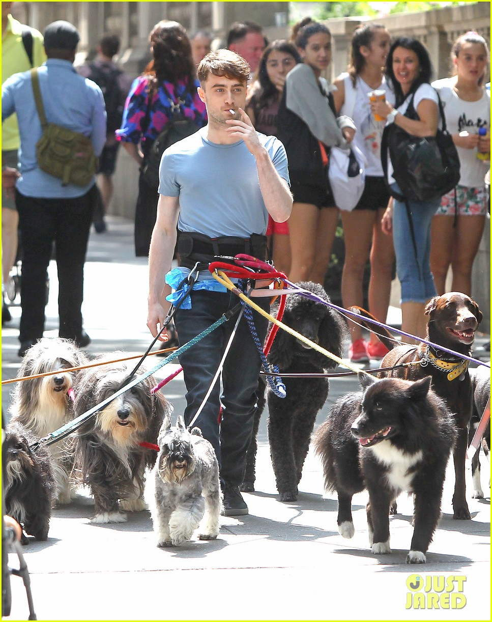 daniel radcliffe dog walker trainwreck nyc set 093147556