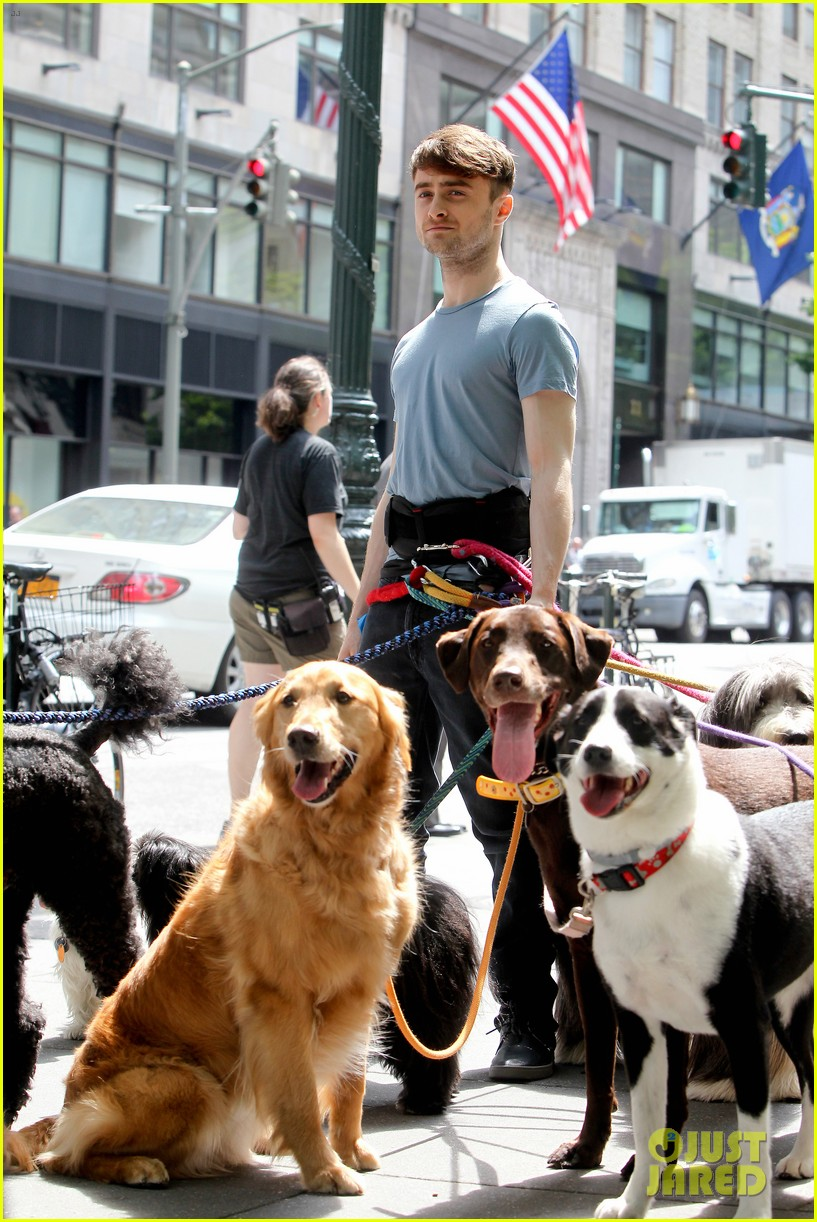daniel radcliffe dog walker trainwreck nyc set 10