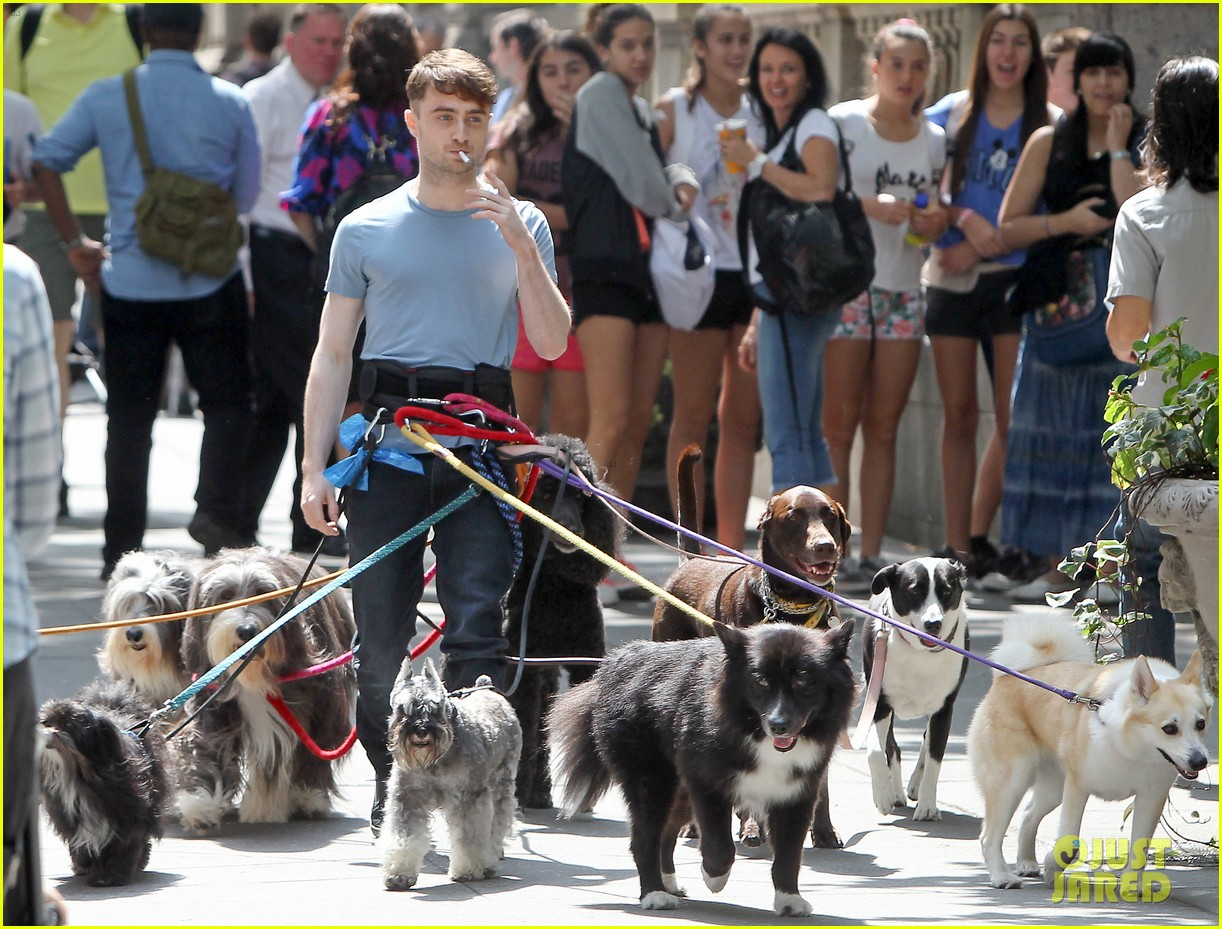 daniel radcliffe dog walker trainwreck nyc set 123147559