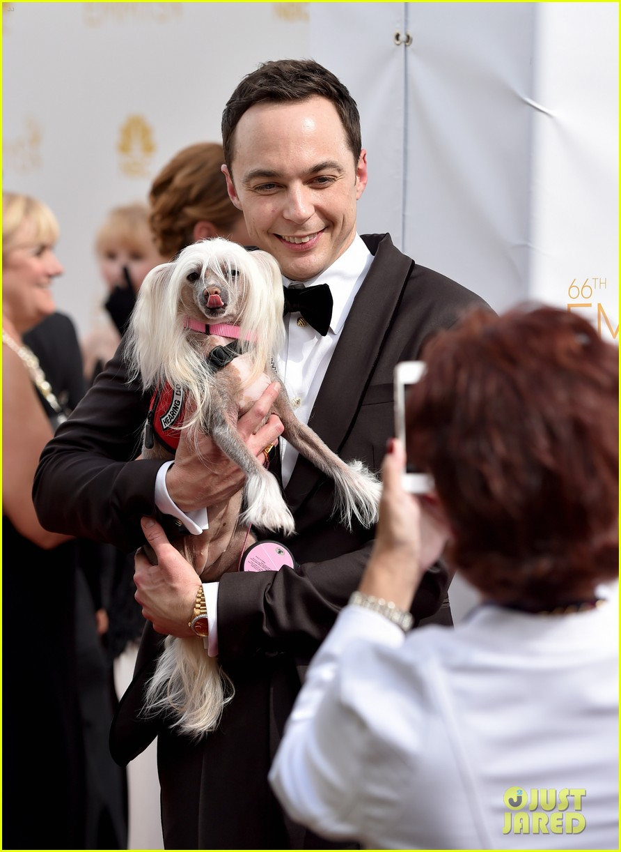 jim parsons mark ruffalo normal heart emmys 023183867