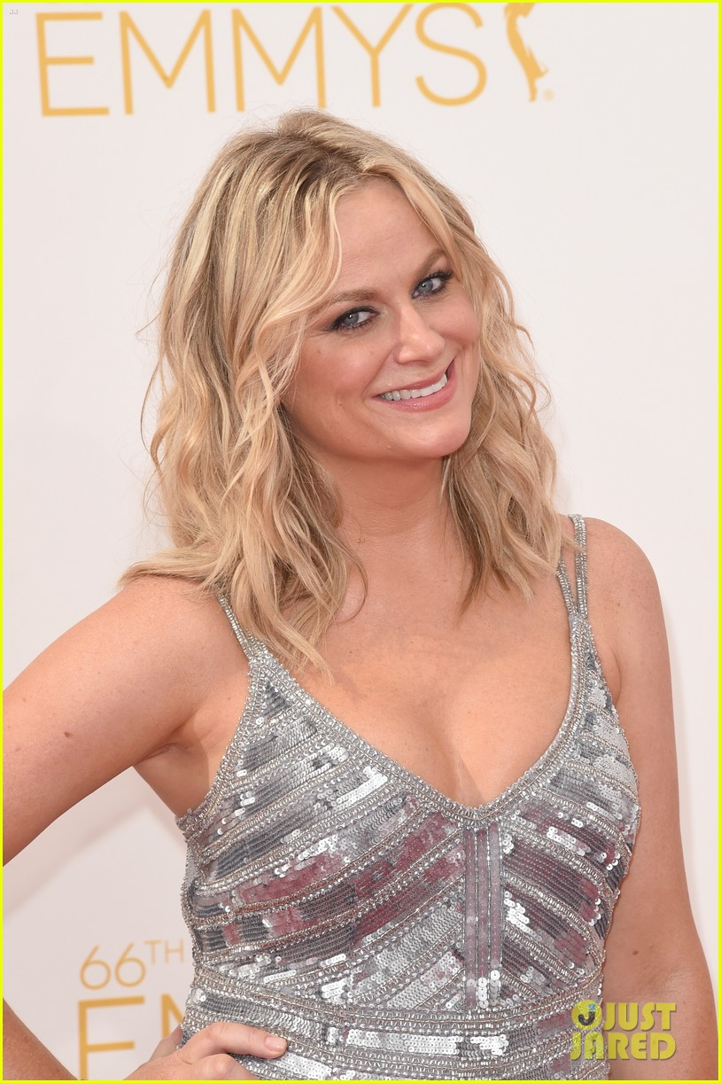 amy poehler emmys 2014 red carpet 01
