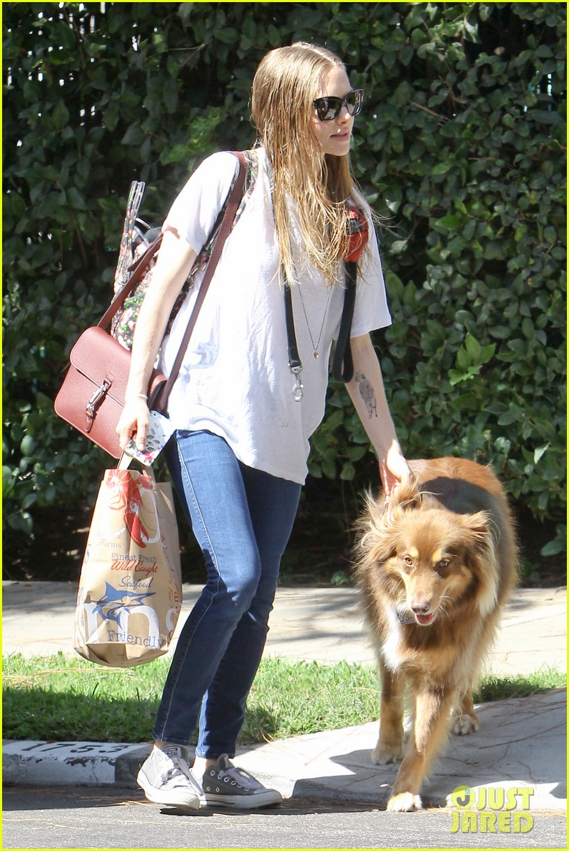 amanda seyfried pup finn is too cute even when hes guilty 043188427