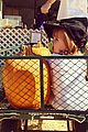 jaime king james knight pumpkin patch 02