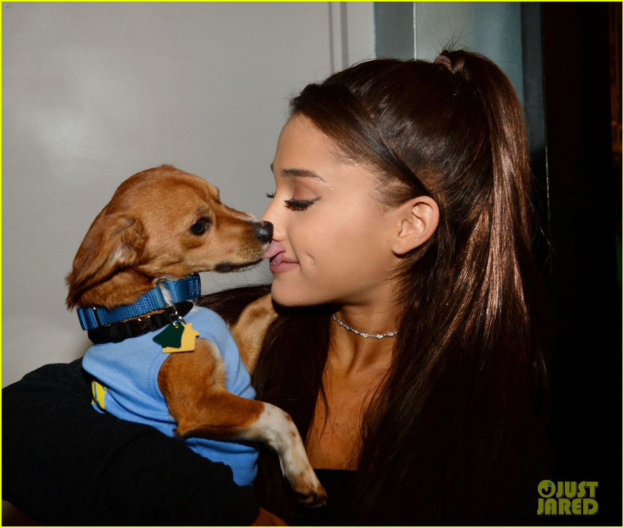 ariana grande is doing amazing things for nyc rescue dogs 033330356