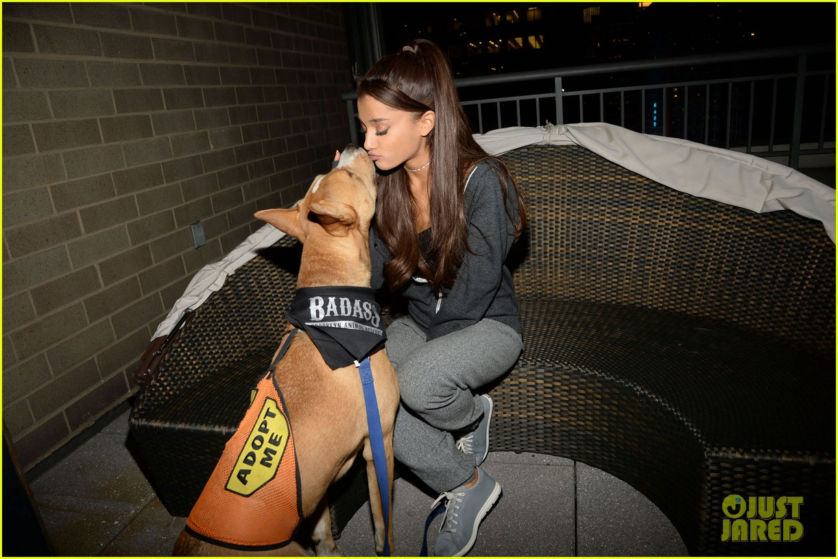 ariana grande is doing amazing things for nyc rescue dogs 153330368
