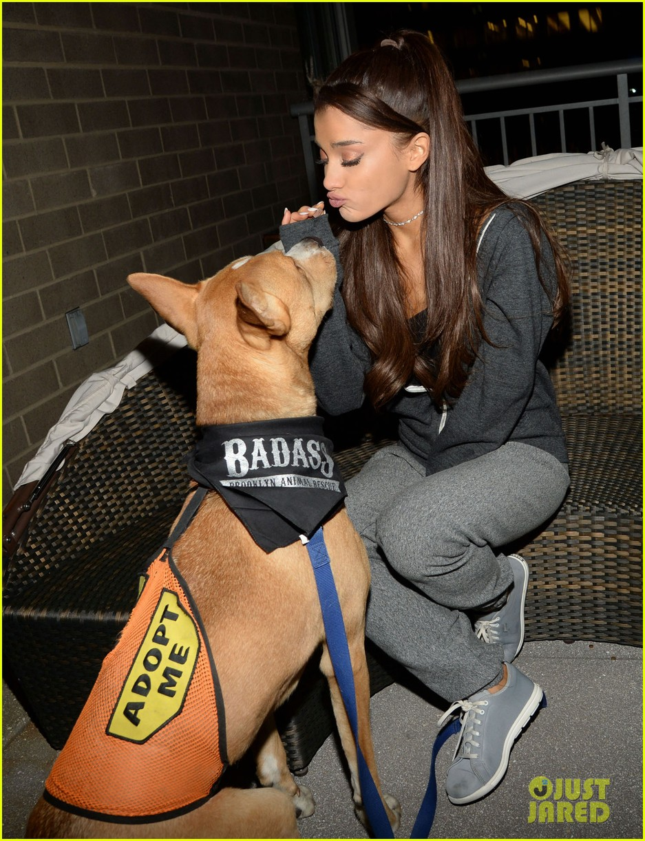 ariana grande is doing amazing things for nyc rescue dogs 163330369