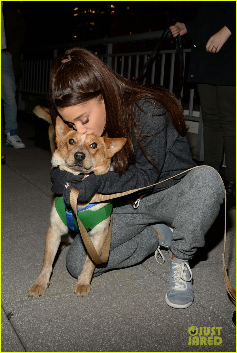 ariana grande is doing amazing things for nyc rescue dogs 173330370