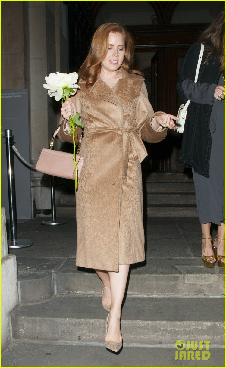 amy adams husband darren le gallo step out for first time after small wedding 113375065