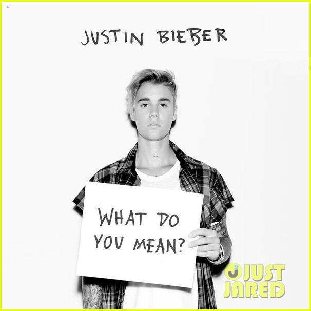 justin bieber what do you mean full song lyrics photo