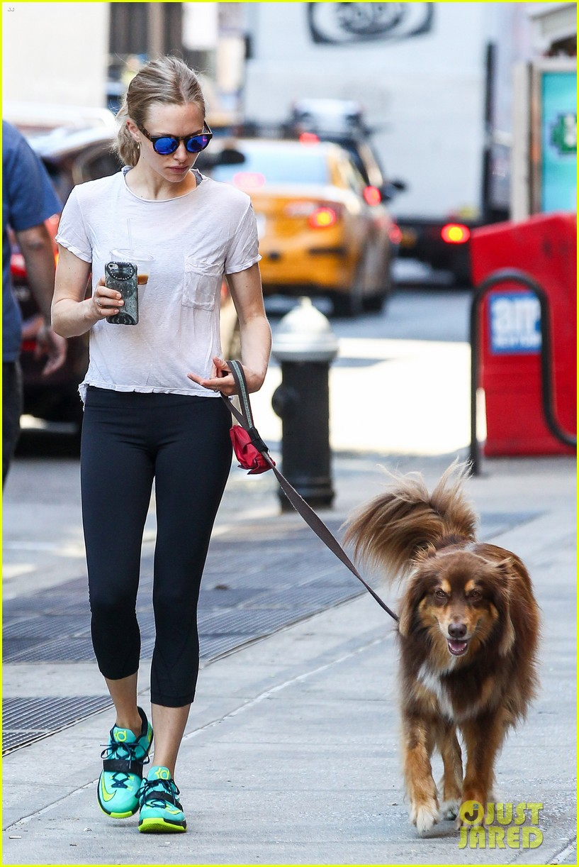 Amanda Seyfried Gives Her Pup Finn A Y Makeover
