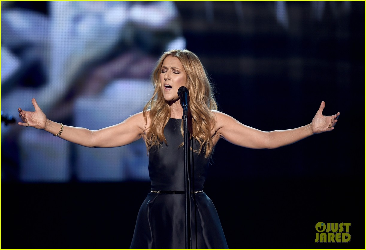 celine dion tribute to paris amas 2015 063515087