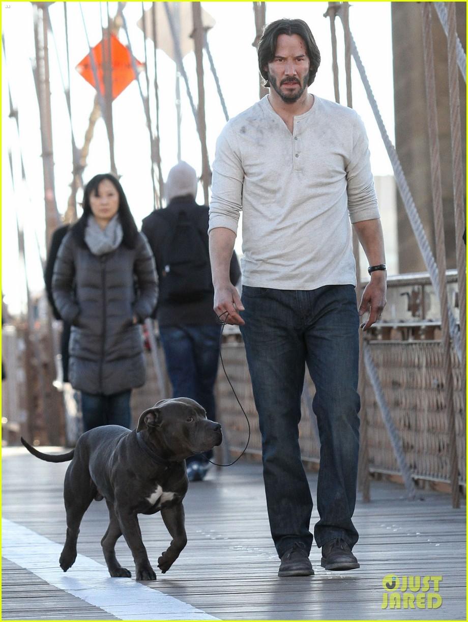John Wick 2 Hund
