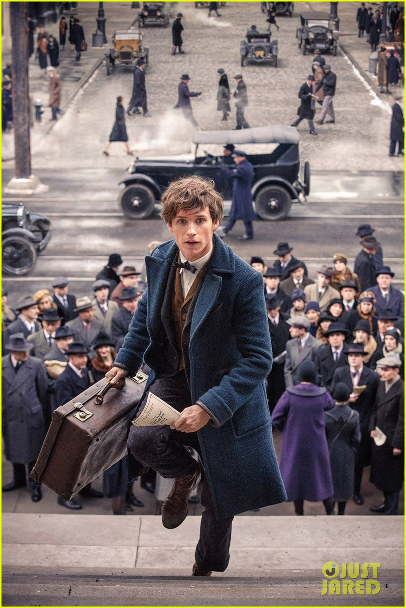 fantastic beasts where to find sneak peek 103623160