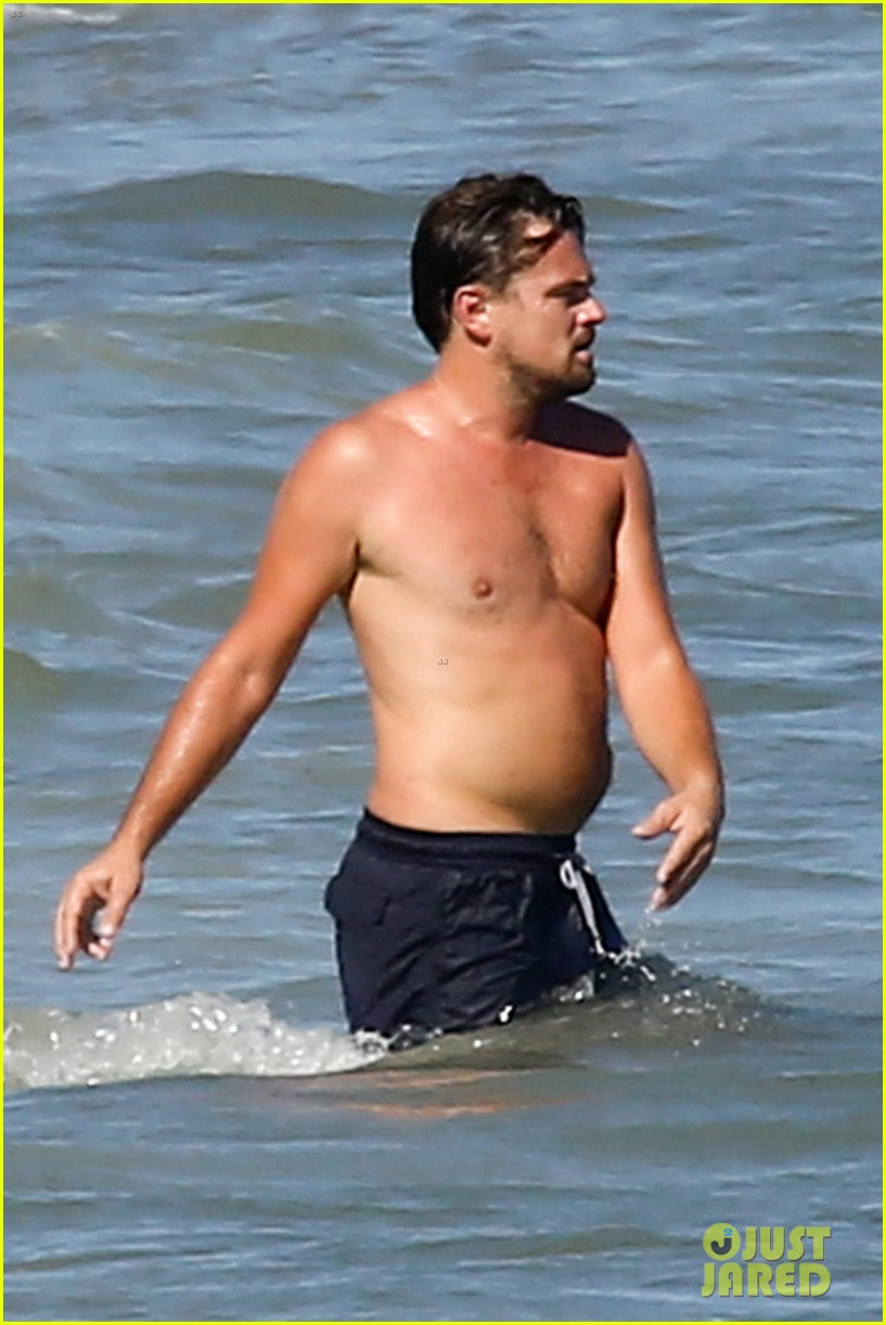 Leonardo DiCaprio  Wikipedia