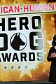katharine mcphee shows her support at the hero dog awards 2016 33