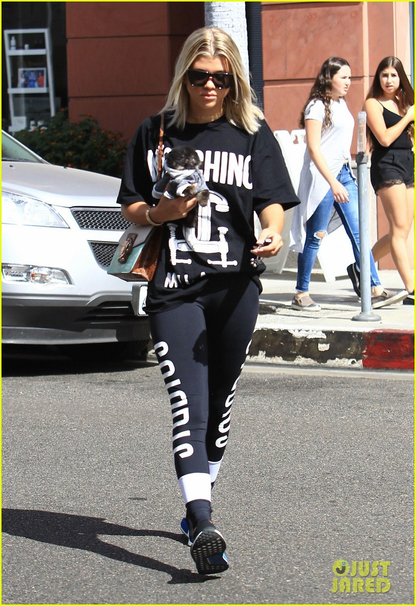 sofia richie dressed up her dog for a trip to the nail salon 063781279