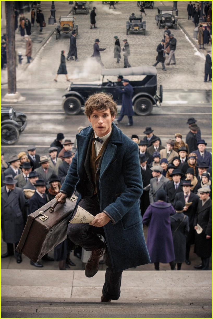fantastic beasts and where to find them cast 013811721