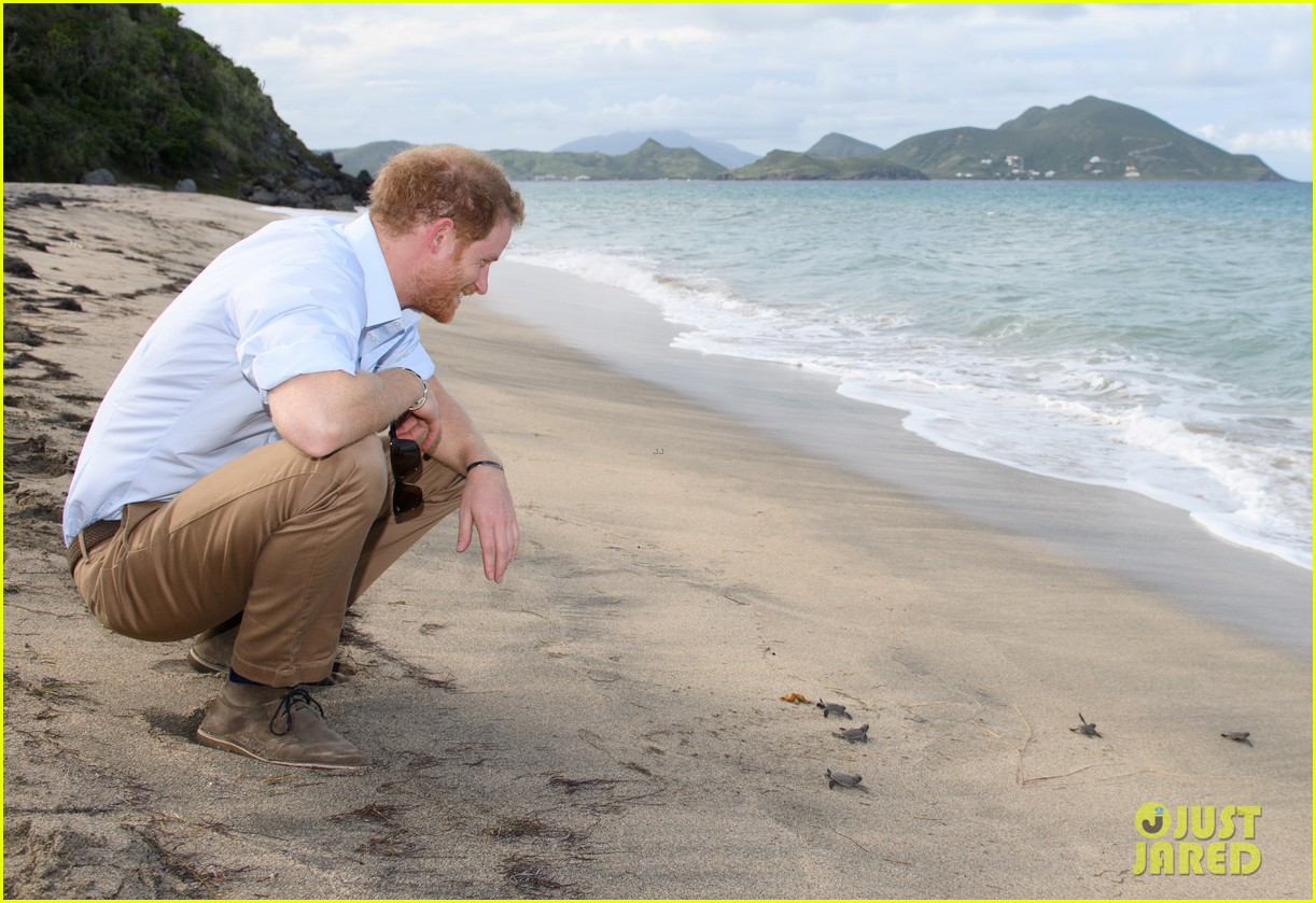 prince harry cant contact girlfriend megham markle as he travels caribbean 103815392