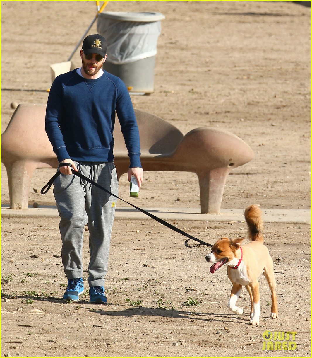 chris evans takes his dog to the dog park 023842706