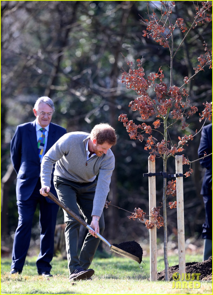 prince harry gets in touch with nature at epping forest 163874289