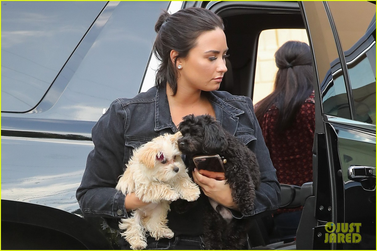 demi lovato seeing smufs everywhere 033882060
