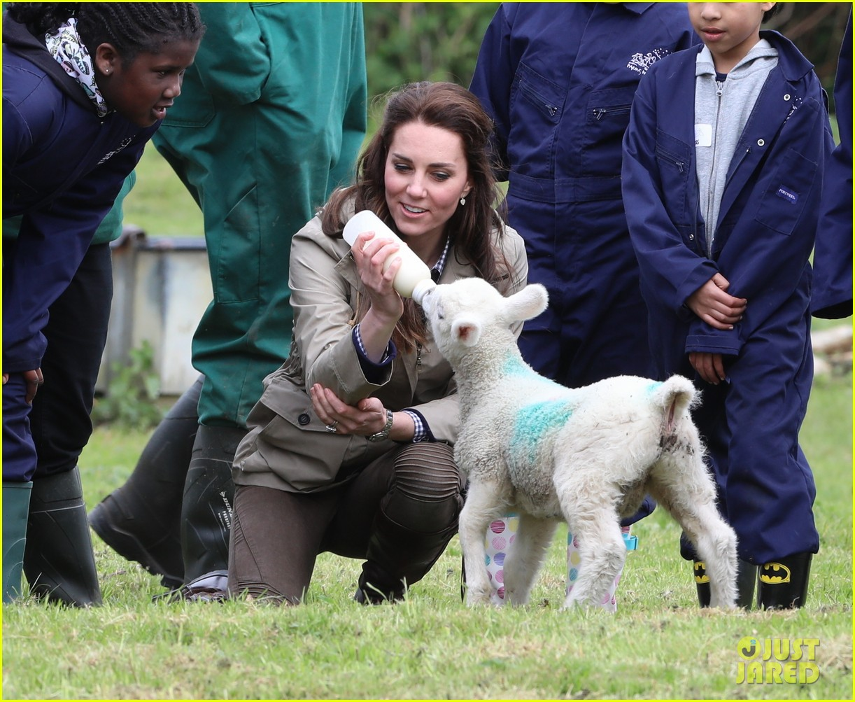 kate middleton feed baby lambs farms for children visit 203894800