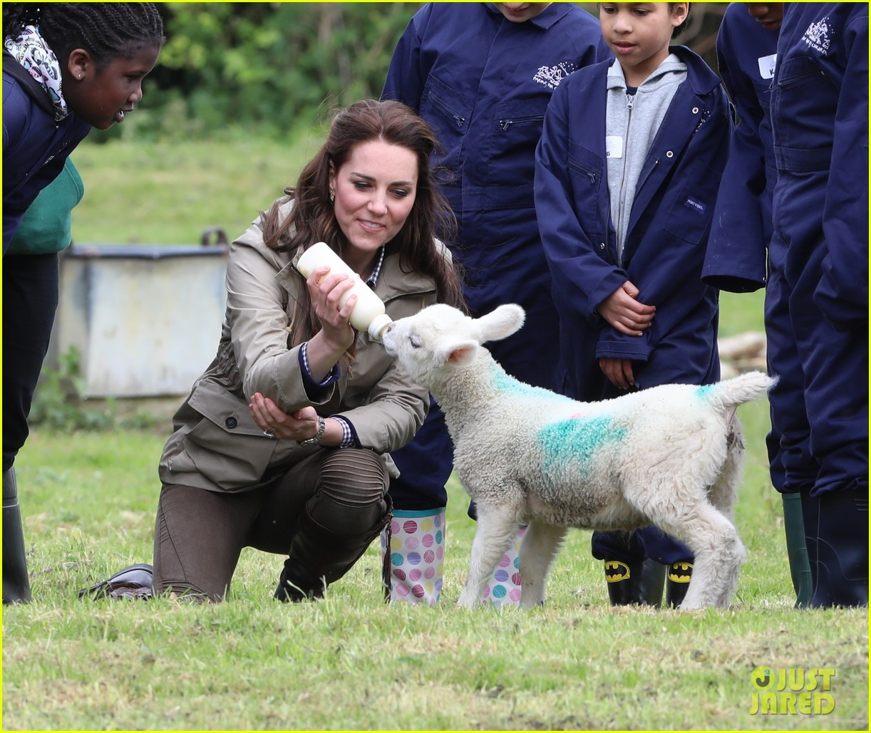 kate middleton feed baby lambs farms for children visit 213894801