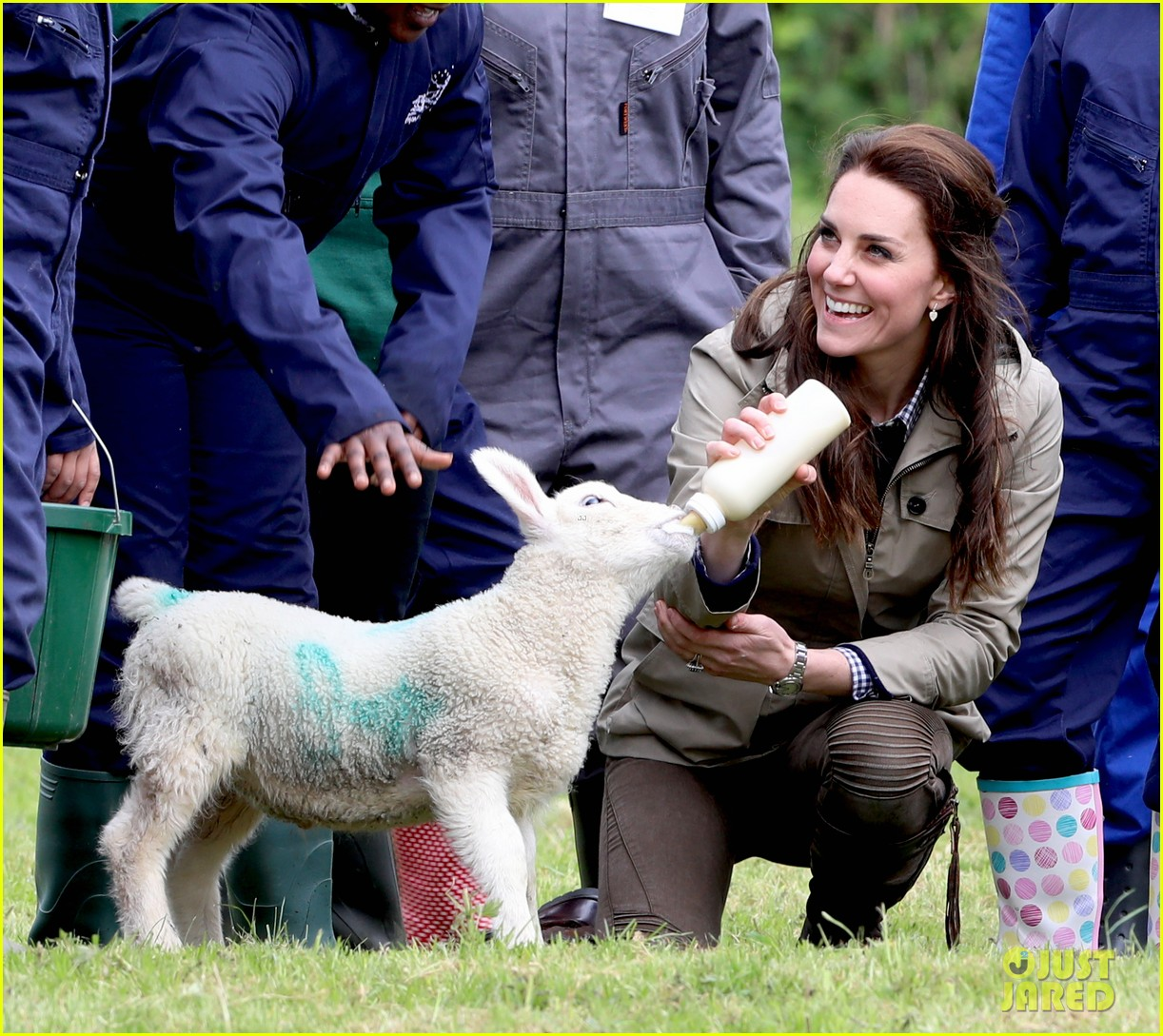 kate middleton feed baby lambs farms for children visit 233894803