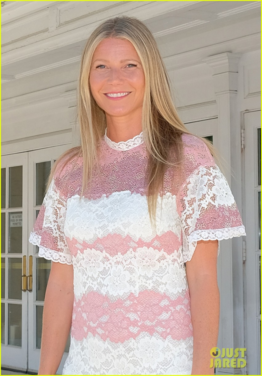 gwyneth paltrow rocks pink lacy dress for despicable me 3 screening 013924139