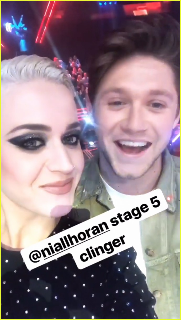 katy perry calls niall horan stage five clinger 013922610