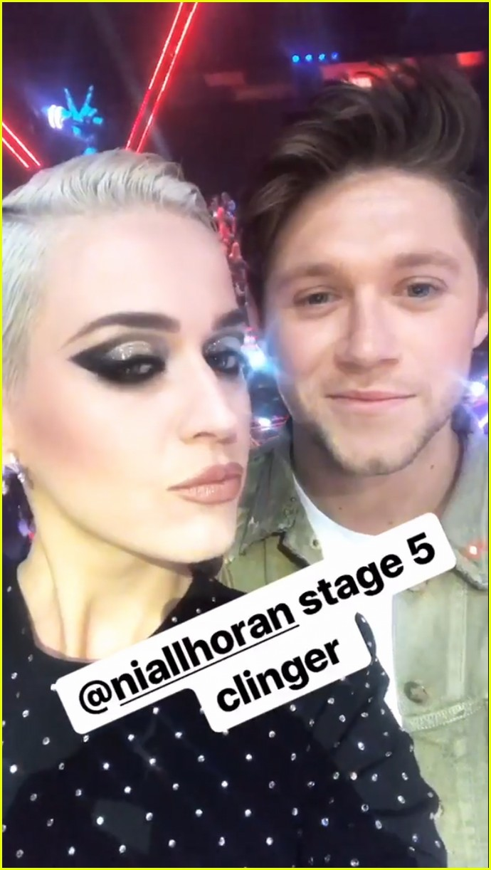 katy perry calls niall horan stage five clinger 033922612