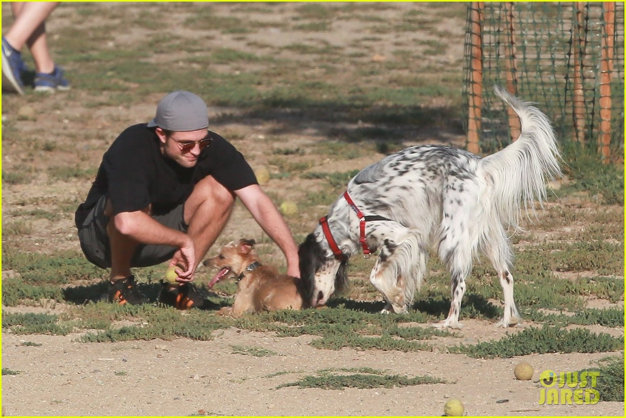 robert pattinson plays dog park 033925390