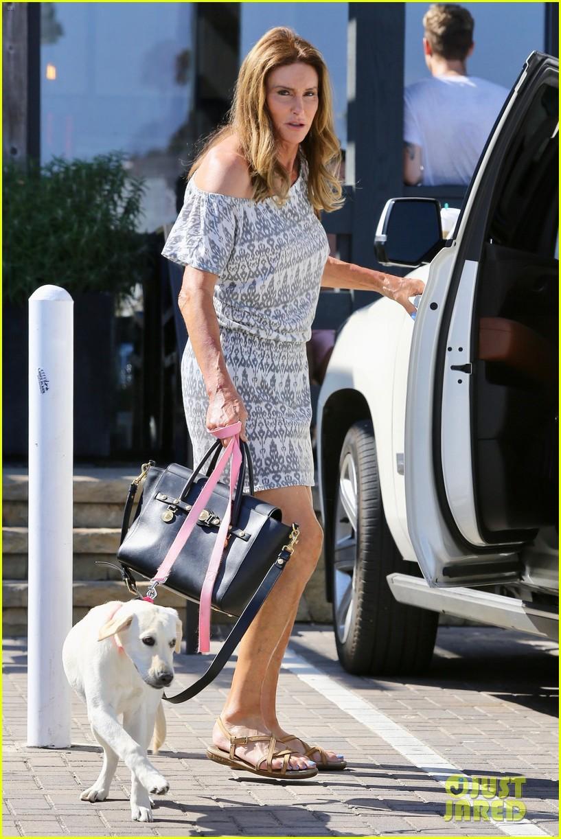 caitlyn jenner dog accompanies her on starbucks stop 053947960