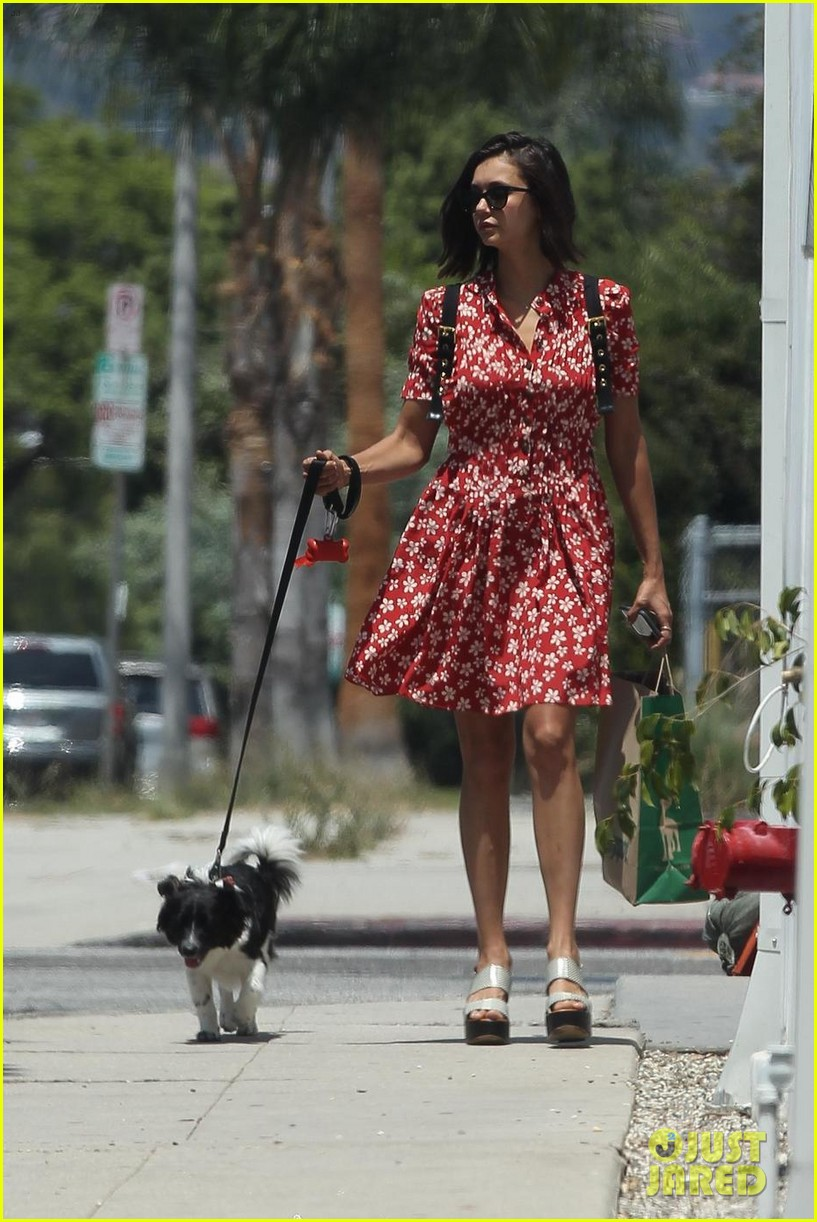 nina dobrev walks her dog maverick 043938862