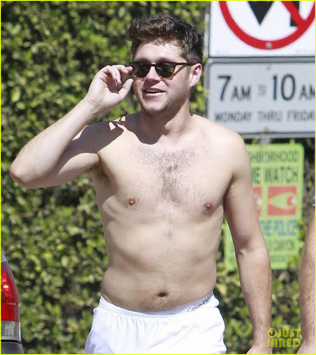 niall horan goes for shirtless hike at las runyon canyon 043940903