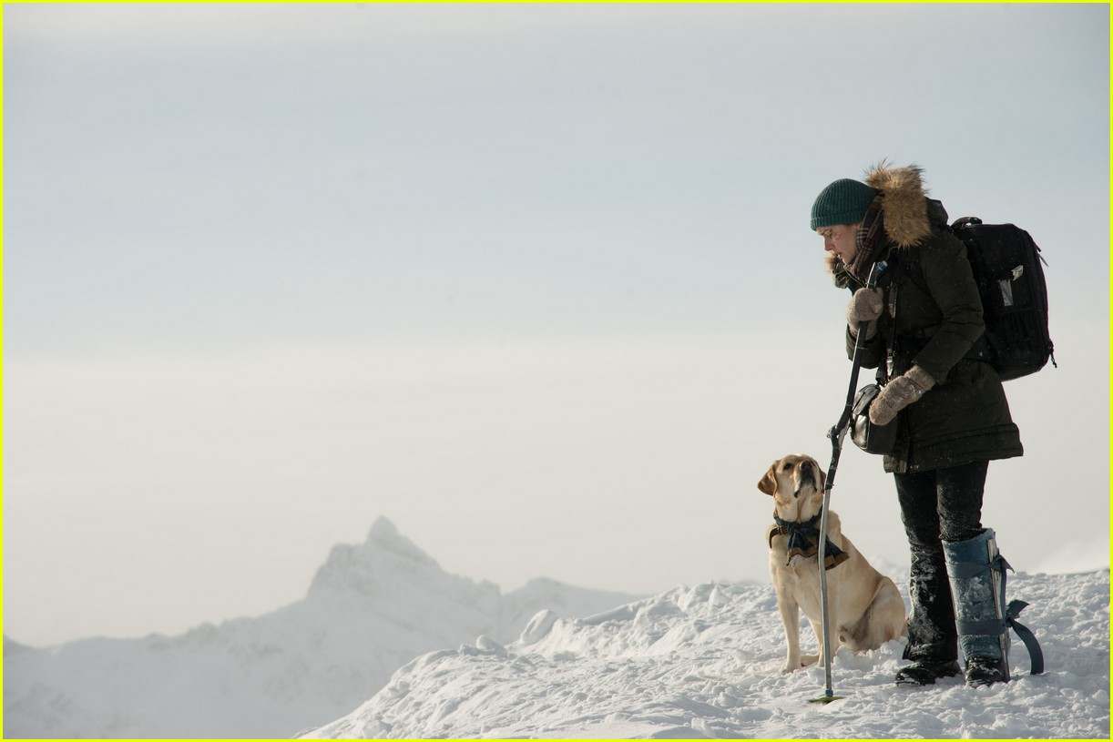 kate winslet compared the revenant to mountain between us 043948449