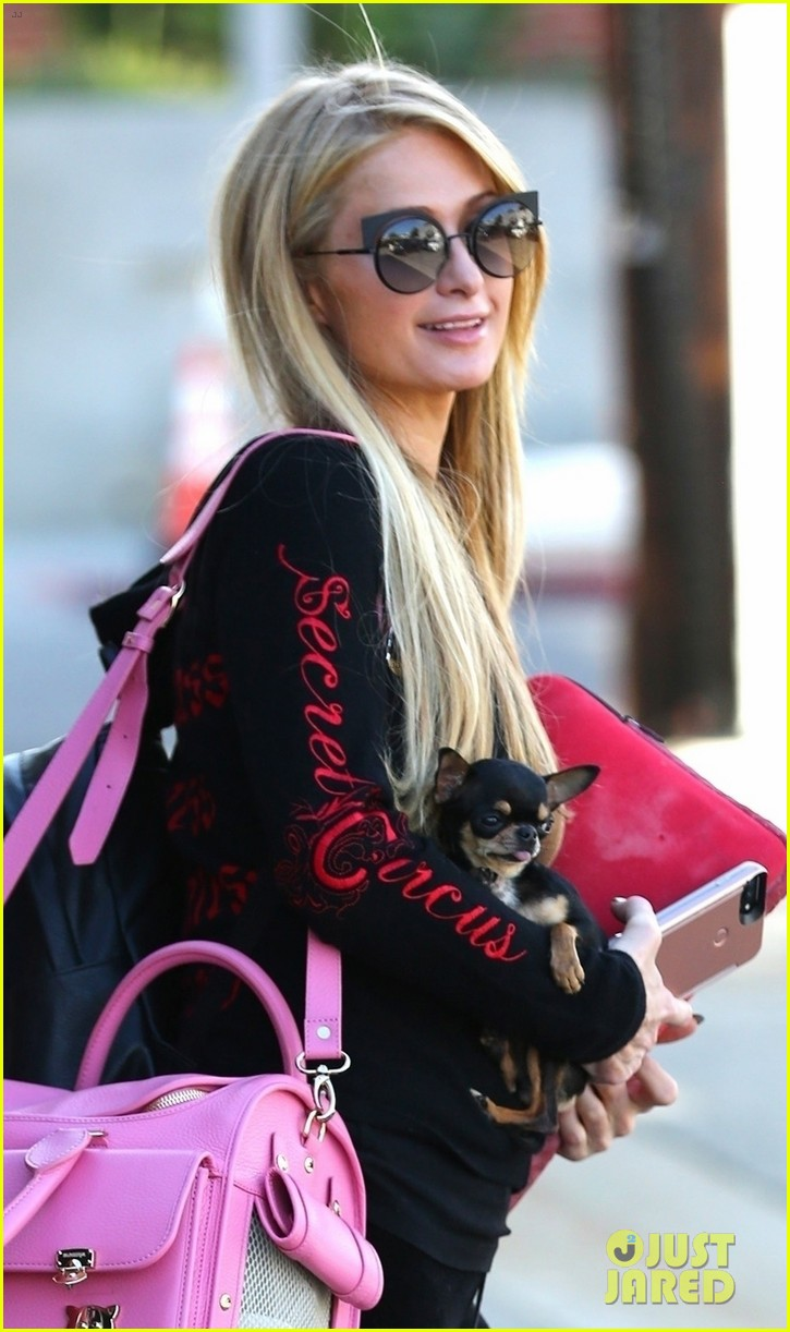 paris hilton enjoys a day of pampering with her pup 023965542