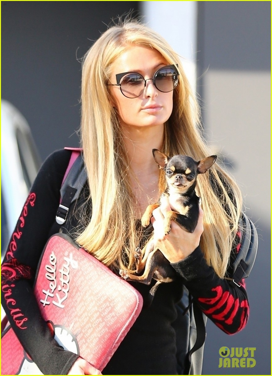 paris hilton enjoys a day of pampering with her pup 043965544