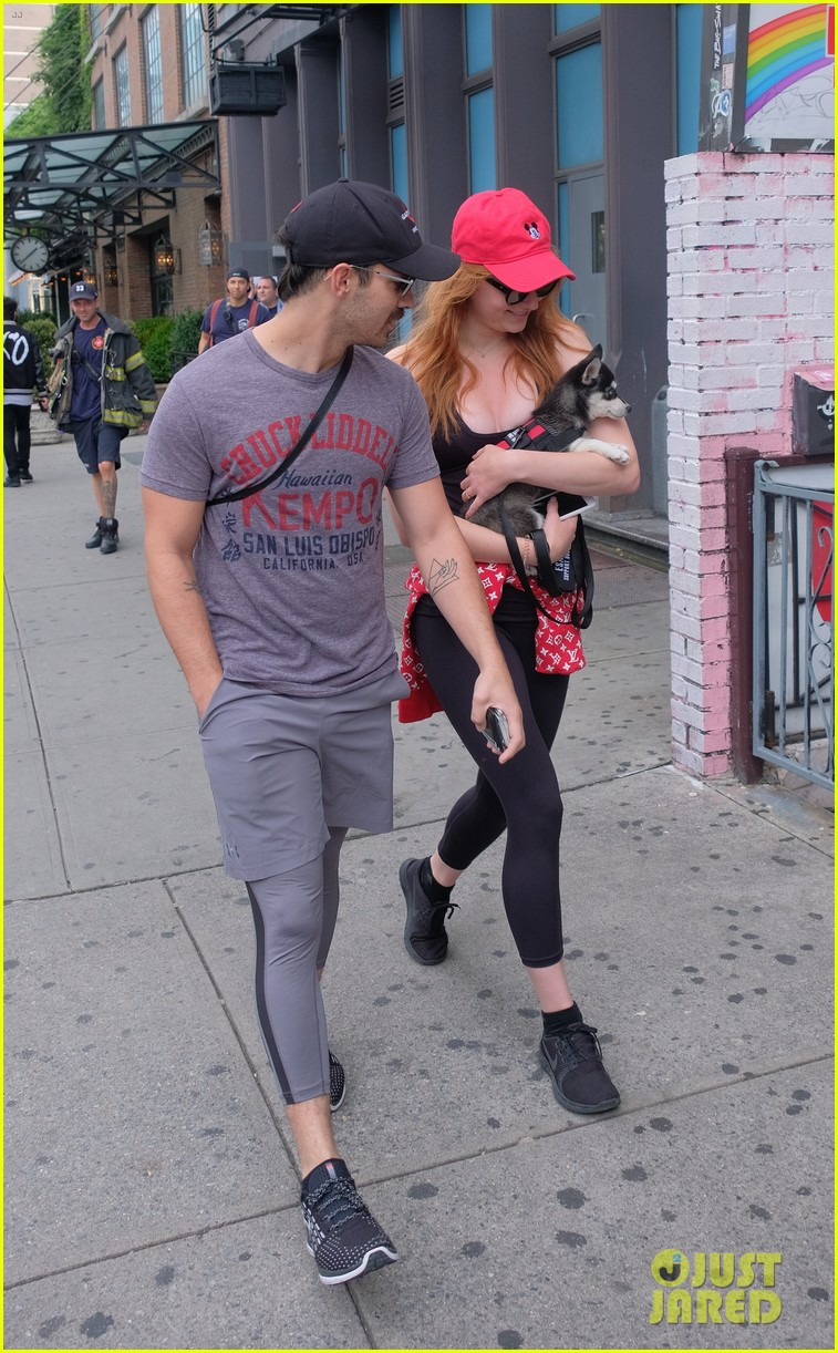 joe jonas and sophie turner adorably walk their new dog together 043952241