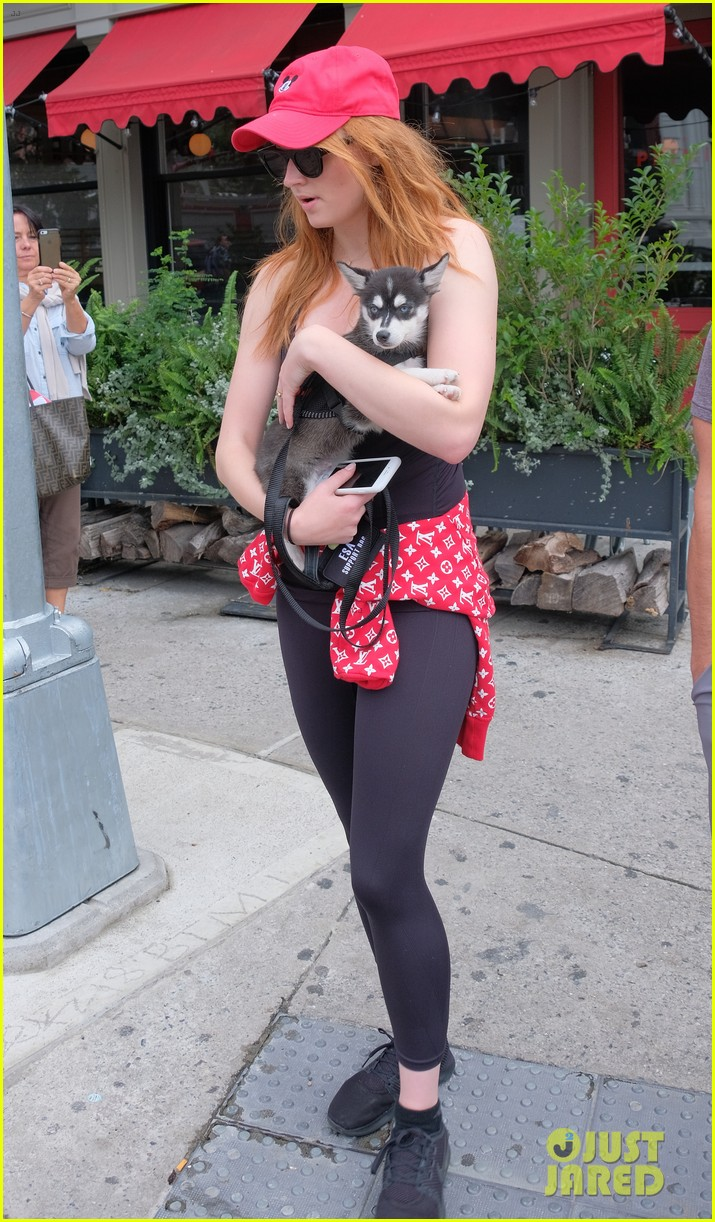 joe jonas and sophie turner adorably walk their new dog together 153952252
