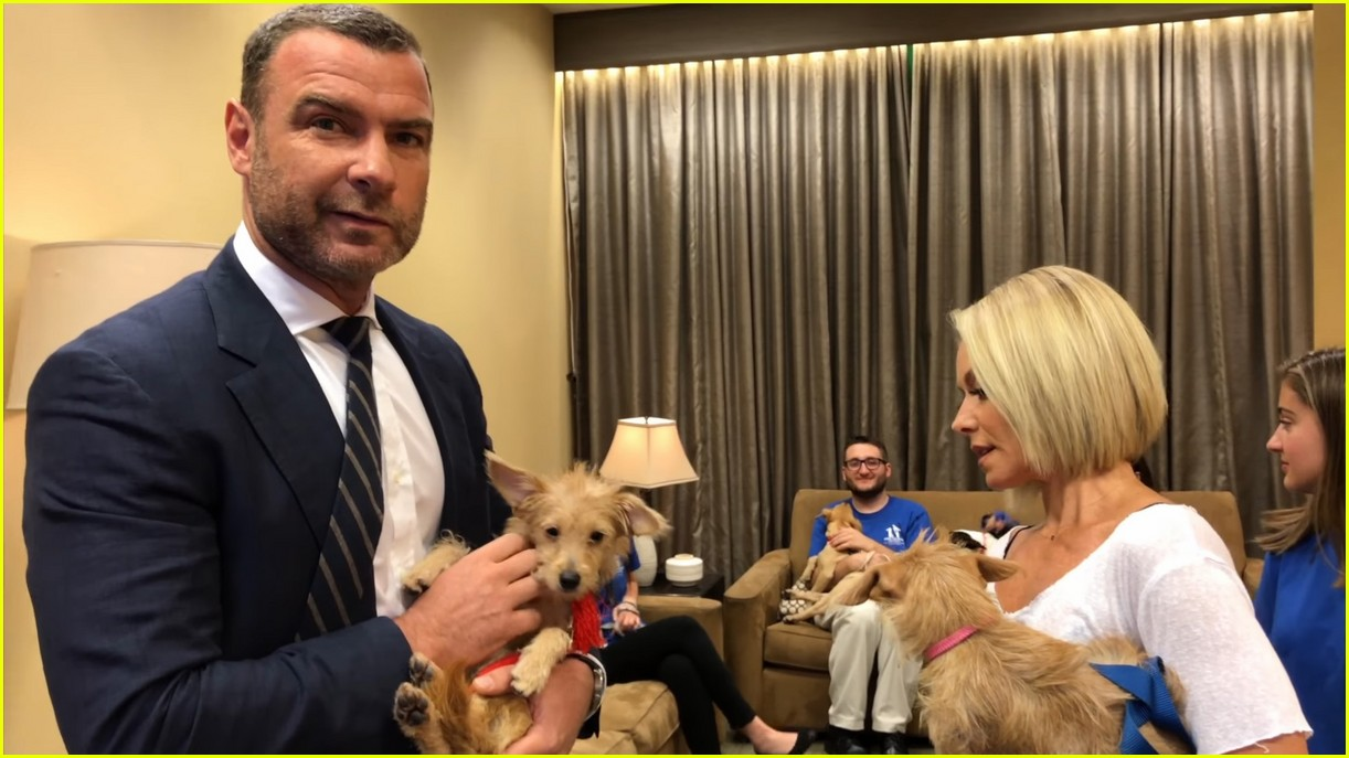 liev schreiber adopts two dogs displaced by hurricane harvey 043951394