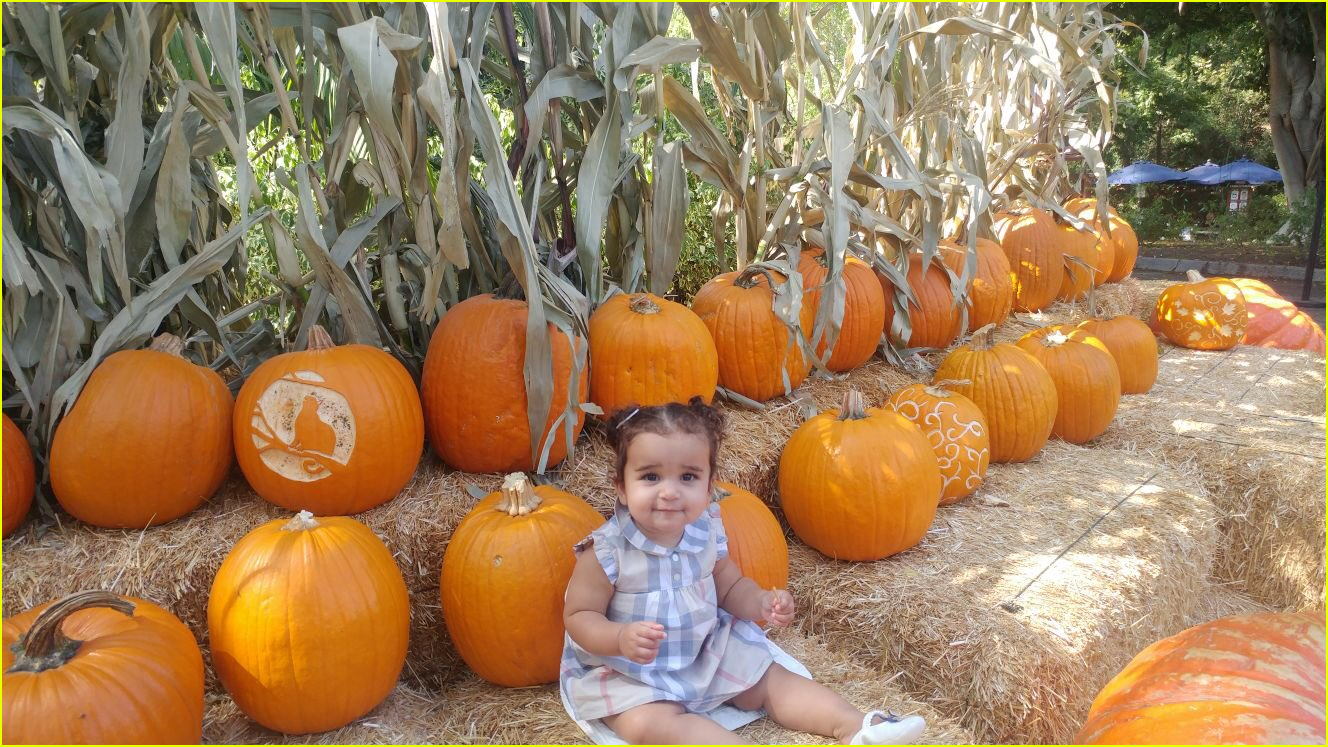 rob kardashian shares adorable photos of daughter dream pumpkin picking 023972409