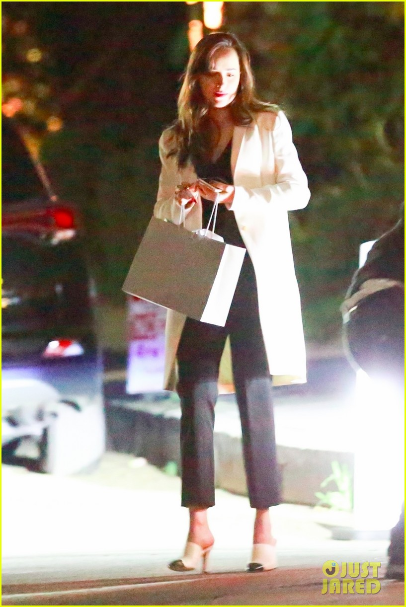 dakota johnson mom holiday party 073996647